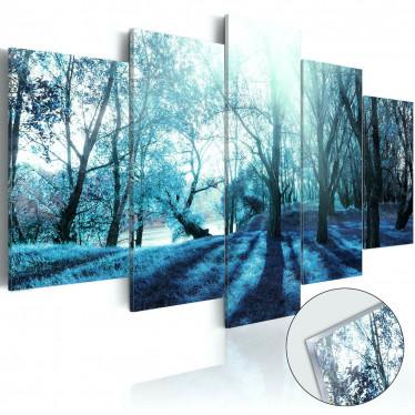 Afbeelding op acrylglas Blue Glade - 100x50 cm