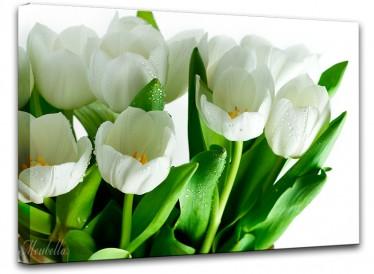Schilderij Witte tulpen 85x113 - ACTIE