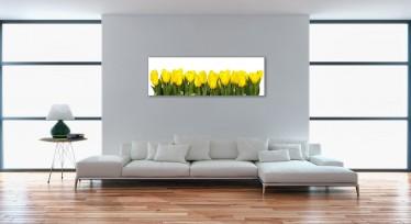 Schilderij Canvas Yellow Tulip 45x140